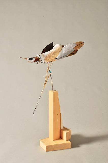 #56 Bird Series